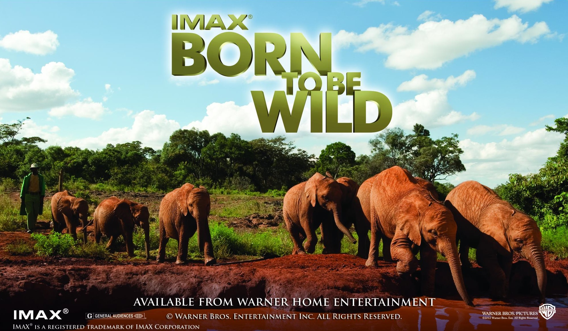 owlkids movie review born to be wild owlkids